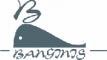 banginis